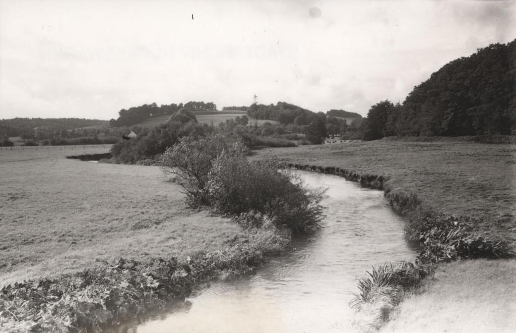 Wupperwiesen01 1920